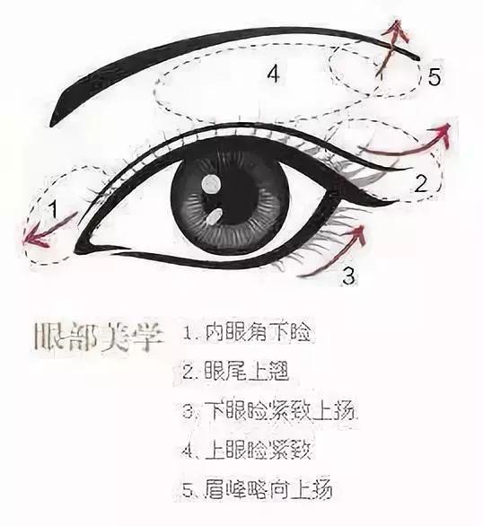 眼综合包括什么项目?