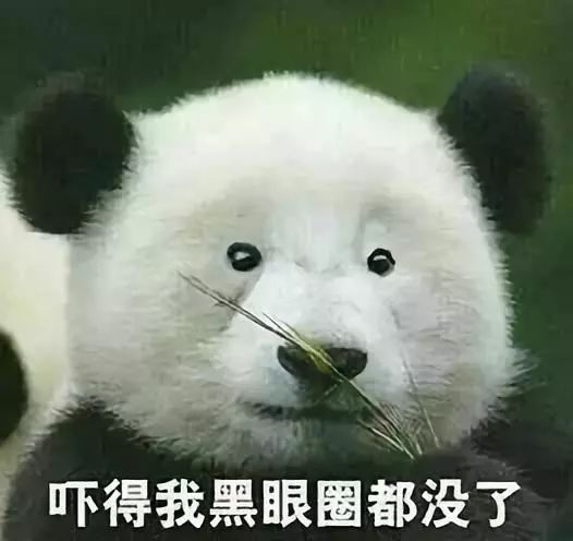 如何拯救熊猫眼?