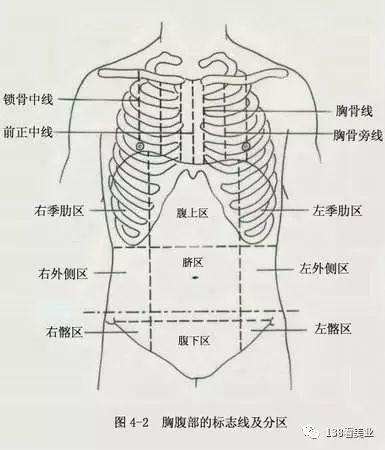 九宫图腹部按摩是什么?