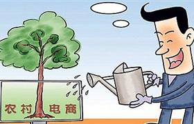 农村市场成为电商发展新高地