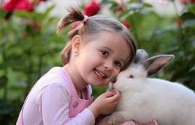 2023年全球主要市场杜绝美妆产品动物测试现象