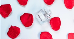 资生堂集团旗下三大香水品牌将于今年入驻天猫